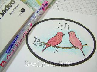 Mb birds 3
