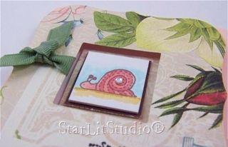 Inchie snail 3