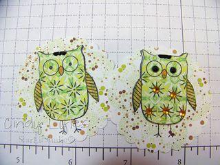Ha owls 4