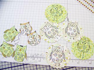 Ha owls 3