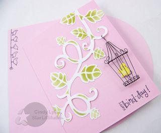 Birdie card 4