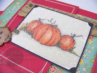 Lockhart pumpkins 3