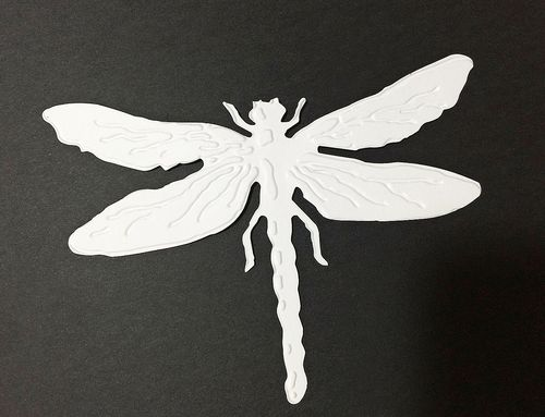 Dragonfly die cut